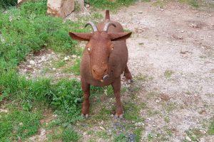 cabra 2